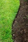 Green grass s shape Stock Photo