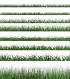 Green grass sample Royalty Free Stock Image