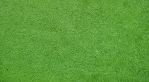 Green grass screen for background royalty free stock photography