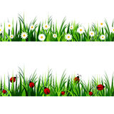Green Grass seamless set Royalty Free Stock Photo