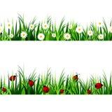 Green Grass seamless set Royalty Free Stock Photo