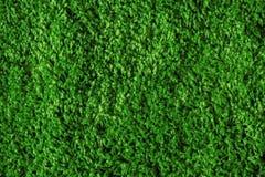 Green grass seamless texture Stock Photo