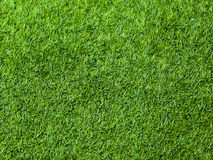 Green grass seamless texture. Seamless in only horizontal dimension. stock images