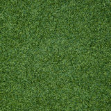 Green grass seamless texture. Seamless in only horizontal dimens Royalty Free Stock Images