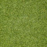 Green grass seamless texture. Seamless in only horizontal dimens Royalty Free Stock Image