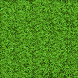 Green grass seamless texture. Seamless in only horizontal dimension Royalty Free Stock Photo