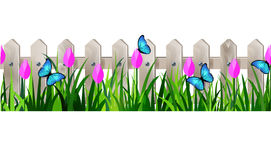 Green Grass seamless Stock Images