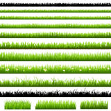 Green Grass Set. Isolated On White Background, Vector Illustration Royalty Free Stock Photos