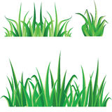 green grass set Stock Image