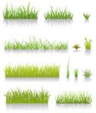 Green Grass Set Stock Photos