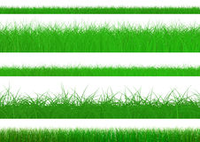 Green Grass Set. Isolated On White Background, Rendering Stock Photos