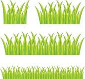 Green grass Royalty Free Stock Photos