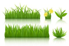 Green grass set. 3d vector realistic image Stock Image