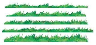 Green Grass Set,  On White Background, Vector Illustration Stock Image