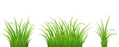 Green grass set royalty free illustration
