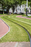Green grass with sinuous rails in the day Stock Photos