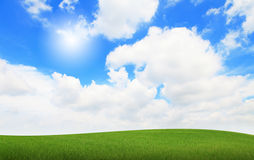 Green grass with sky stock photo