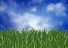 Green grass and sky. Illustration of green grass and cloudy sky Stock Photos