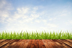 Green grass with sky and wood floor Stock Images
