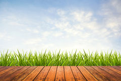 Green grass with sky and wood floor Royalty Free Stock Images