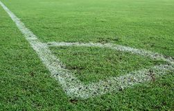 Green grass, soccer field. A corner line and green grass on soccers field Stock Image