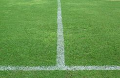 Green grass, soccer field. White lind on green grass soccer field Royalty Free Stock Images