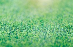 Green grass soccer field background beautiful pattern of fresh green grass for football sport royalty free stock photos