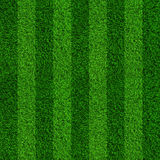 Green grass soccer field background. Realistic textured Royalty Free Stock Images
