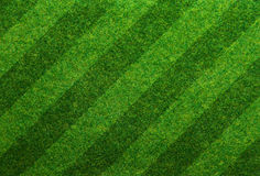 Green grass soccer field background Stock Photos