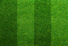 Green grass soccer field background Stock Image