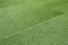 Green grass soccer field texture and background Royalty Free Stock Image