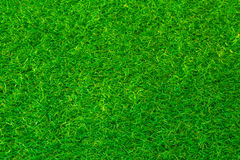 Green grass soccer or golf field background Royalty Free Stock Photos