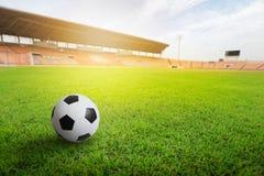 Green grass in soccer stadium. Grass on stadium in sunlight. Royalty Free Stock Photos
