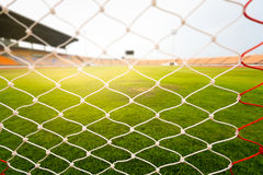 Green grass in soccer stadium with light flare. Stock Photography