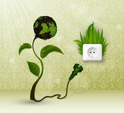Green grass and socket plug Stock Photos