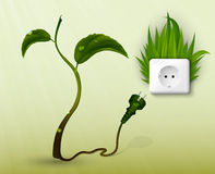 Green grass and a socket with plugs. Stock Image