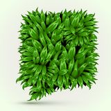 Green Grass Speech Bubble on White Background. Eco Home Concept. Stock Photography