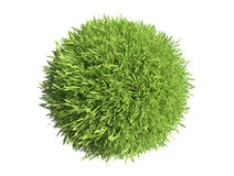 Green grass sphere Royalty Free Stock Photos