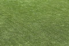 Green grass sport background Stock Photography