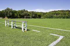 Green grass and sport lines painte Royalty Free Stock Photos