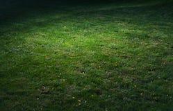 Green grass spot vignette Stock Photos