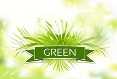 Green grass with spring abstract blur background. Vector illustration Stock Image