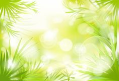 Green grass spring abstract blur background vector Stock Photos