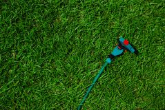 Green grass and sprinkler Royalty Free Stock Photo