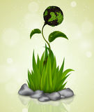 Green grass sprouting from the Earth Stock Photography