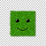 Green grass square field 3D. Face smile. Smiley grassy icon,  white transparent background. Ecology concept. Smiling sign. Symbol eco, nature, safe environment Royalty Free Stock Photo
