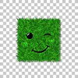 Green grass square field 3D. Face wink smile. Smiley grassy emoticon icon, isolated white background. Happy sign. Symbol. Green grass square field 3D. Face wink Royalty Free Stock Photo
