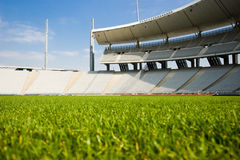 Green Grass and The Stadium Royalty Free Stock Images