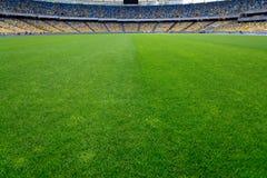 Green grass on stadium stock photo