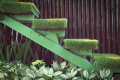 Green grass staircase in garden, interior decoration Royalty Free Stock Images